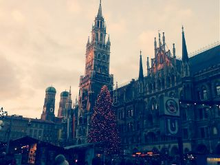 photography winter christmas tree christkindlmarkt munich