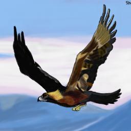 dcbird color splash colorful digital art nature