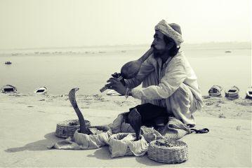 travel india people