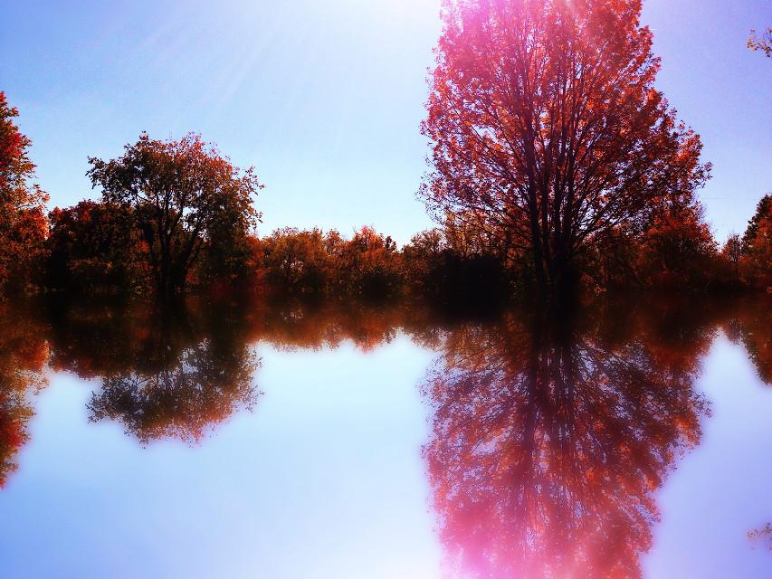 #reflection #autumn