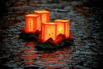 japan lanterns night water beautiful