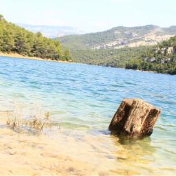 photography nature water summer lake