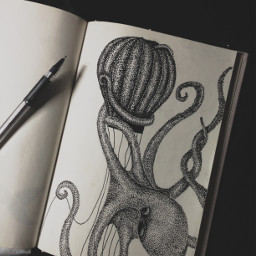 photography drawing pets & animals black & white