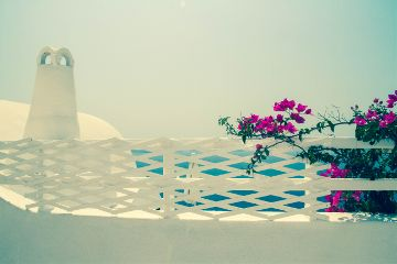 photography outside emotions nature summer travel pink flowers white house santorini holiday creece